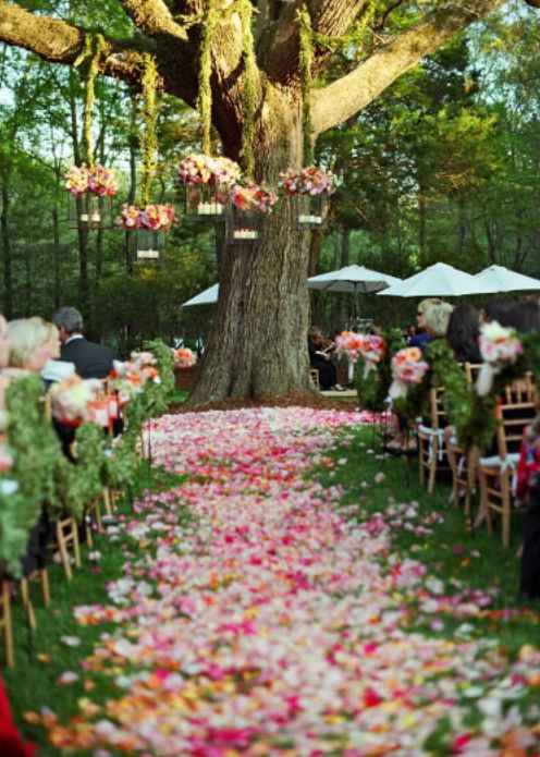 Planning Outdoor Wedding Decorations How To Decorate For Outdoor Weddings