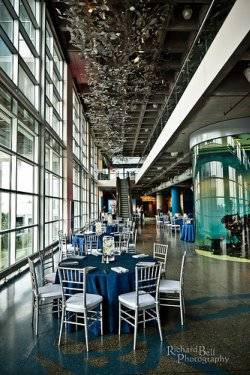 aquarium wedding venue