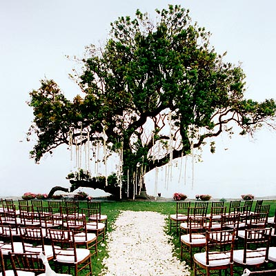 Wedding Aisle Decorations on Planning Outdoor Wedding Decorations  How To Decorate For Outdoor